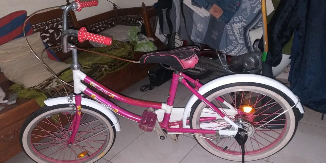 Sepeda pasific casella 3.0