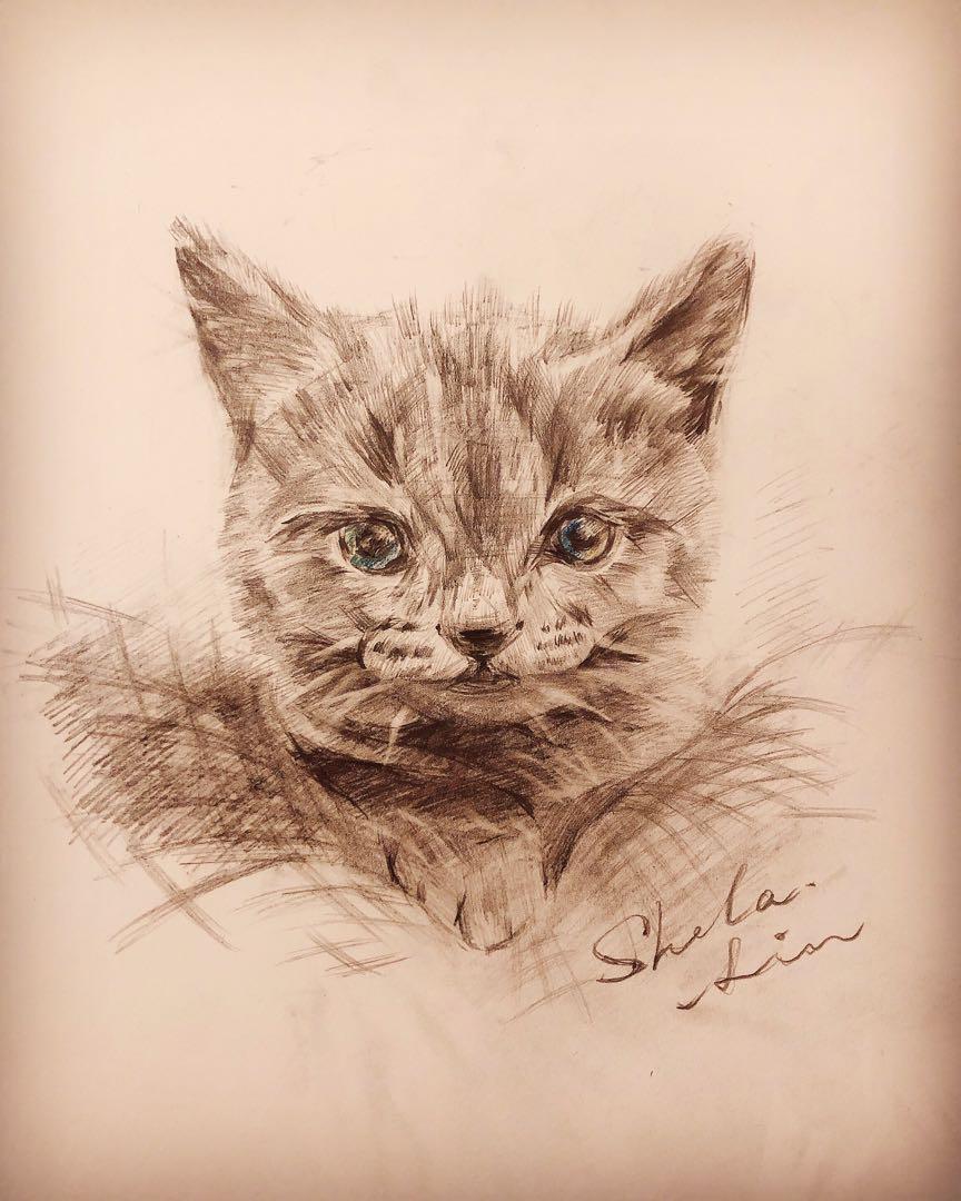 手繪訂製|A4大小|貓咪 或其他動物