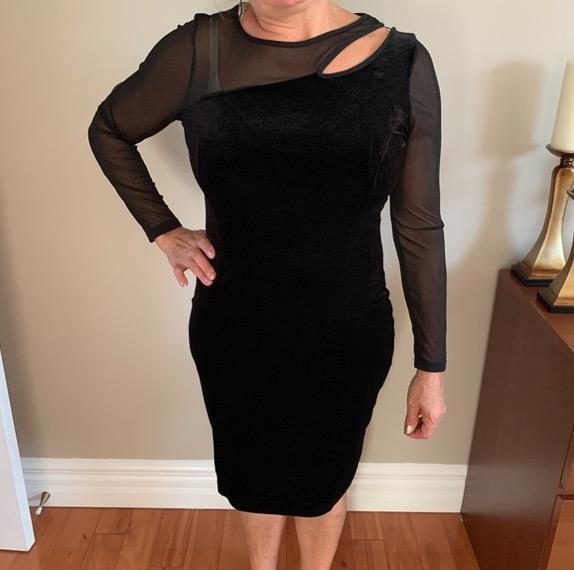 black mesh long sleeve velvet dress