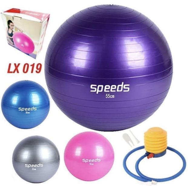 Gym Ball 65cm warna ungu