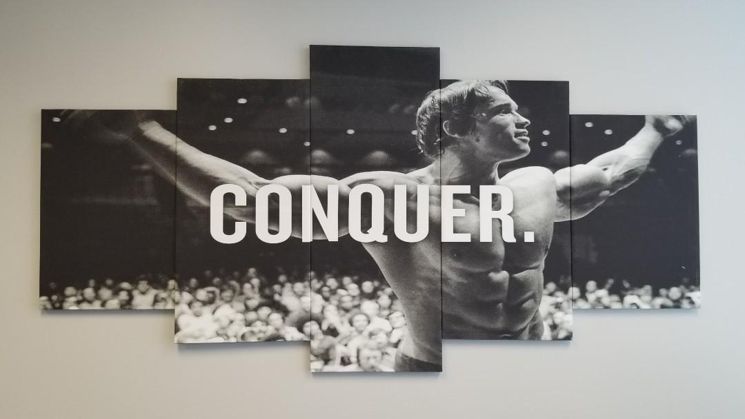 "Arnold Schwarzenegger ""Conquer"" 5-Piece Picture Poster"