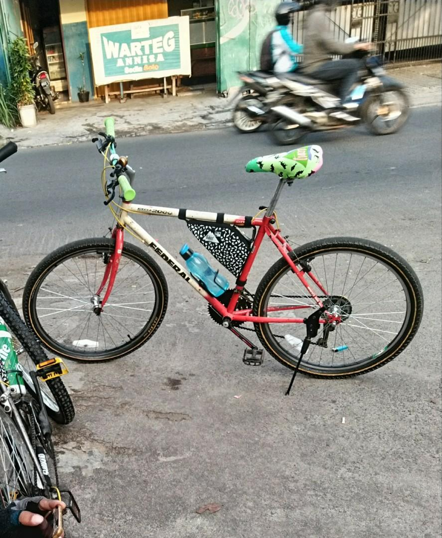 Sepeda Federal citycat mg