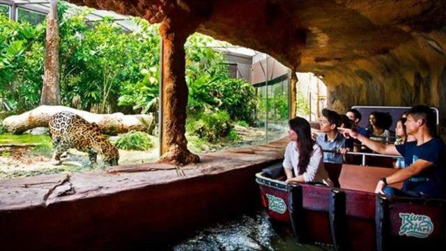 I River Safari cheap ticket discount Boat ride Amazon boat Panda view Zoo Bird Park Night Safari Aquarium Universal studios adventure cove cable car garden by the bay sky park trick eye