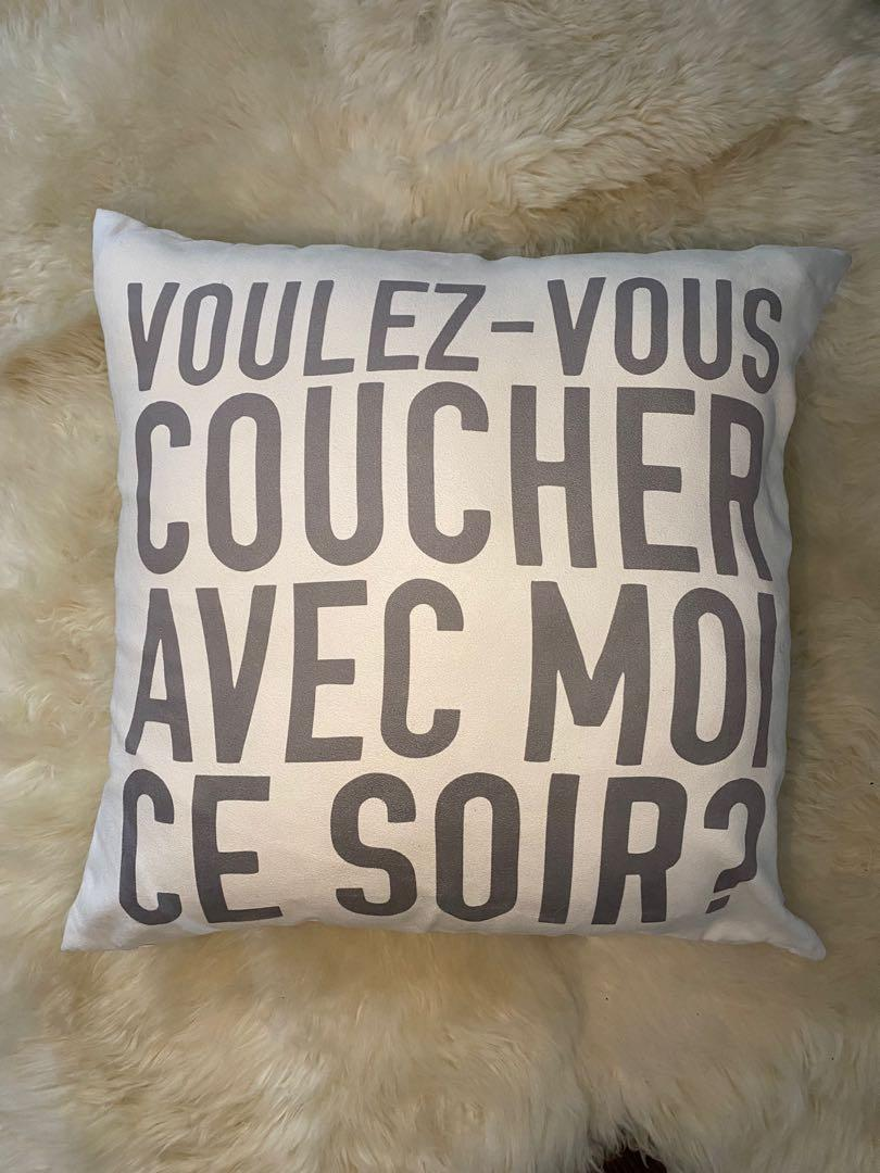 Urban barn French accent pillow