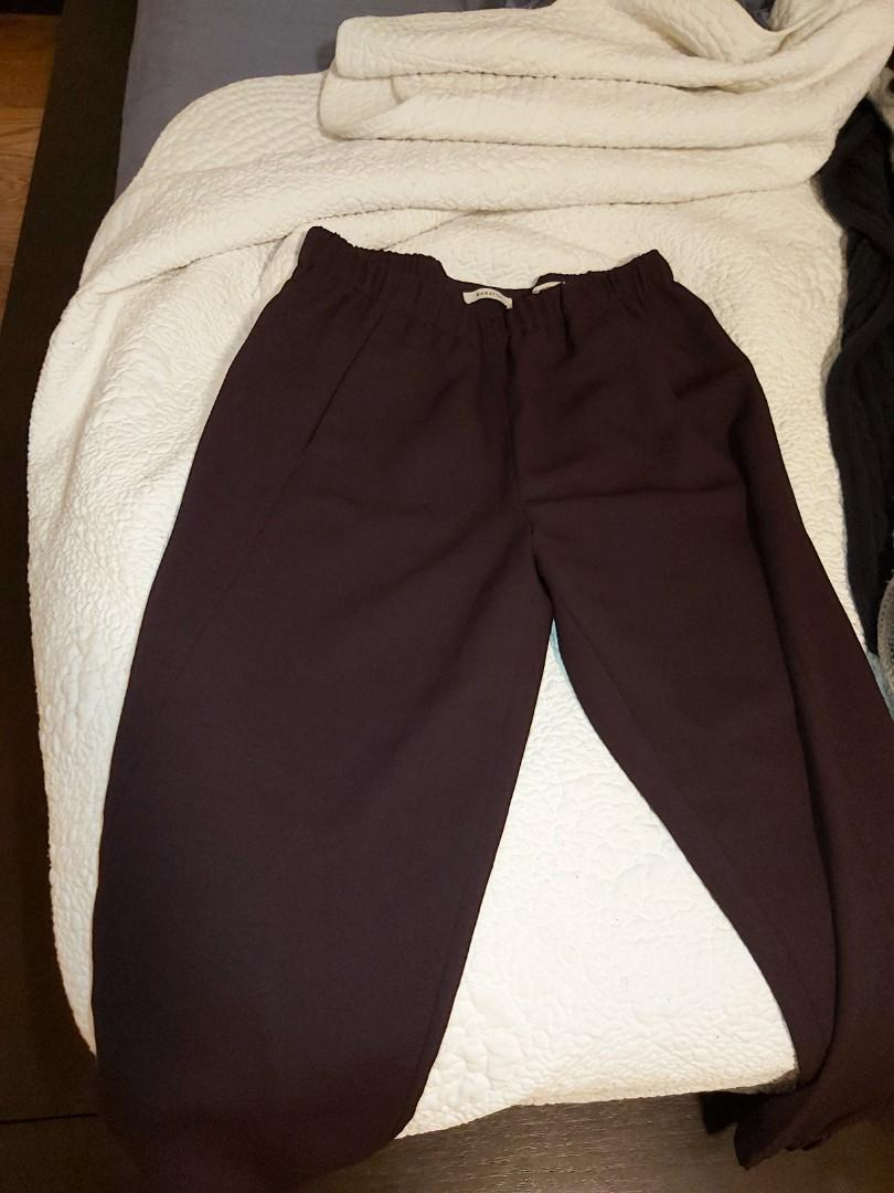 Babton dexter pant from aritzia