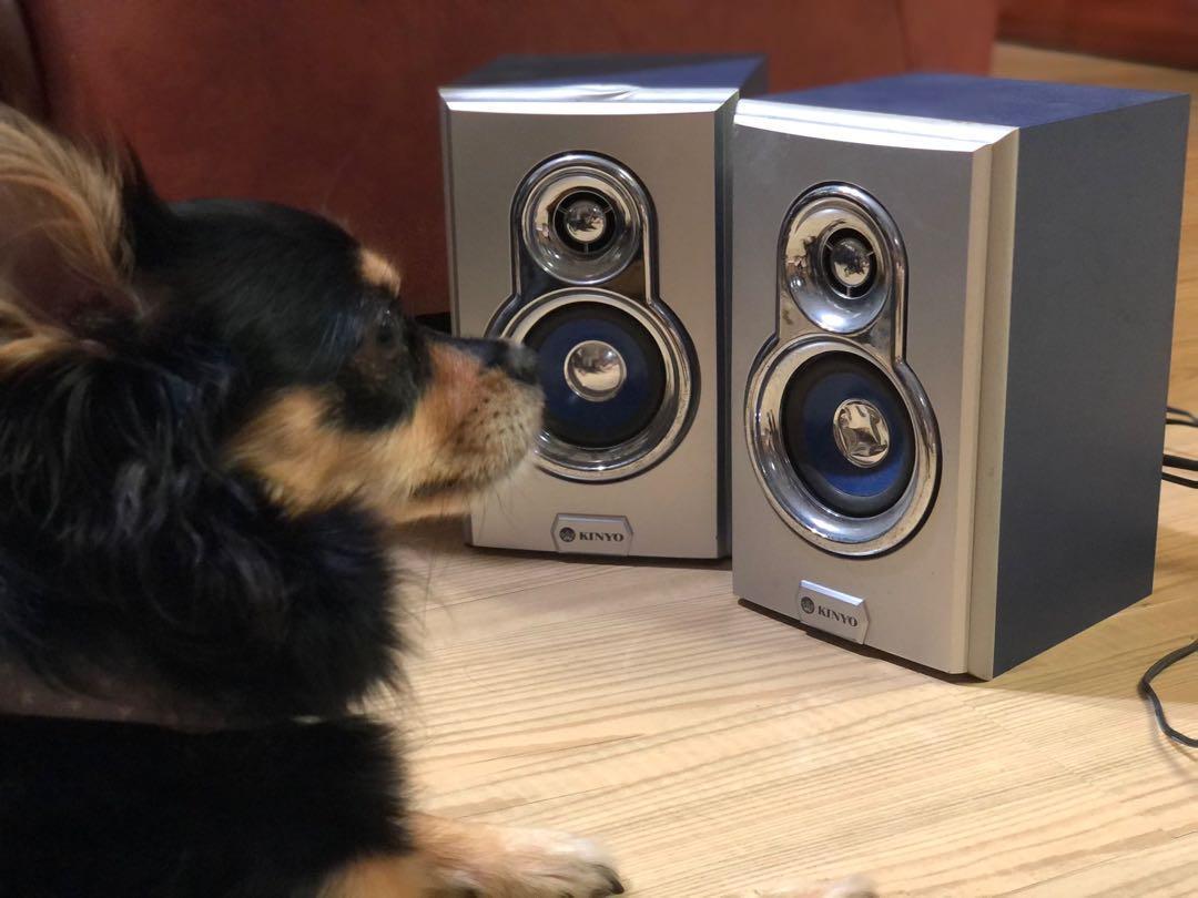 木質擴大音箱2003年