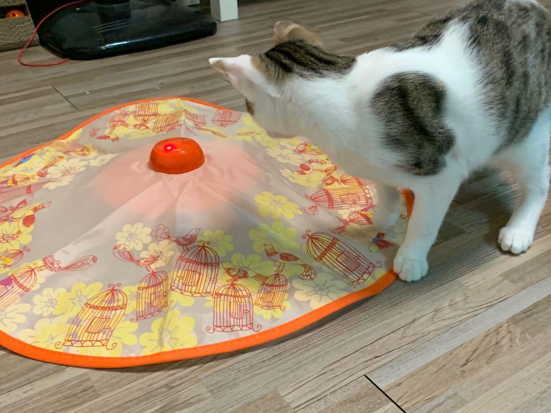 轉盤 自動旋轉 貓咪玩具