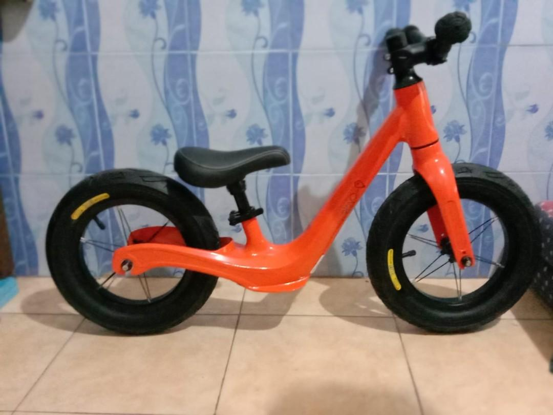 Pushbike icycle