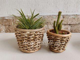 Set of 2 Succulent Pot