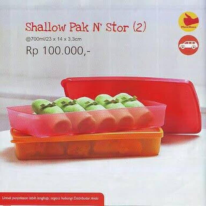 Tupperware Shallow Pak n' stor