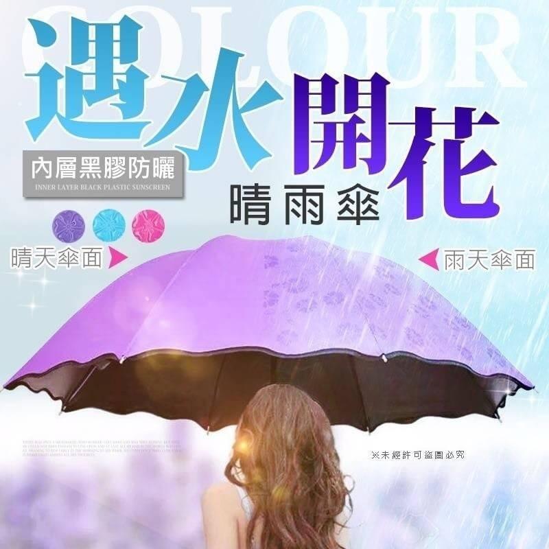 預購-遇水開花晴雨兩用雨傘