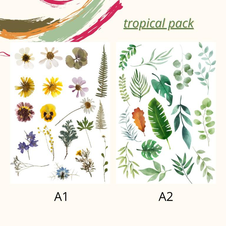 STICKER TUMBLR | TROPICAL EDITION | CASE HP LAPTOP JURNAL
