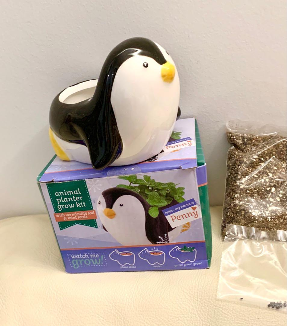 NEW penguin planter with soil and seeds