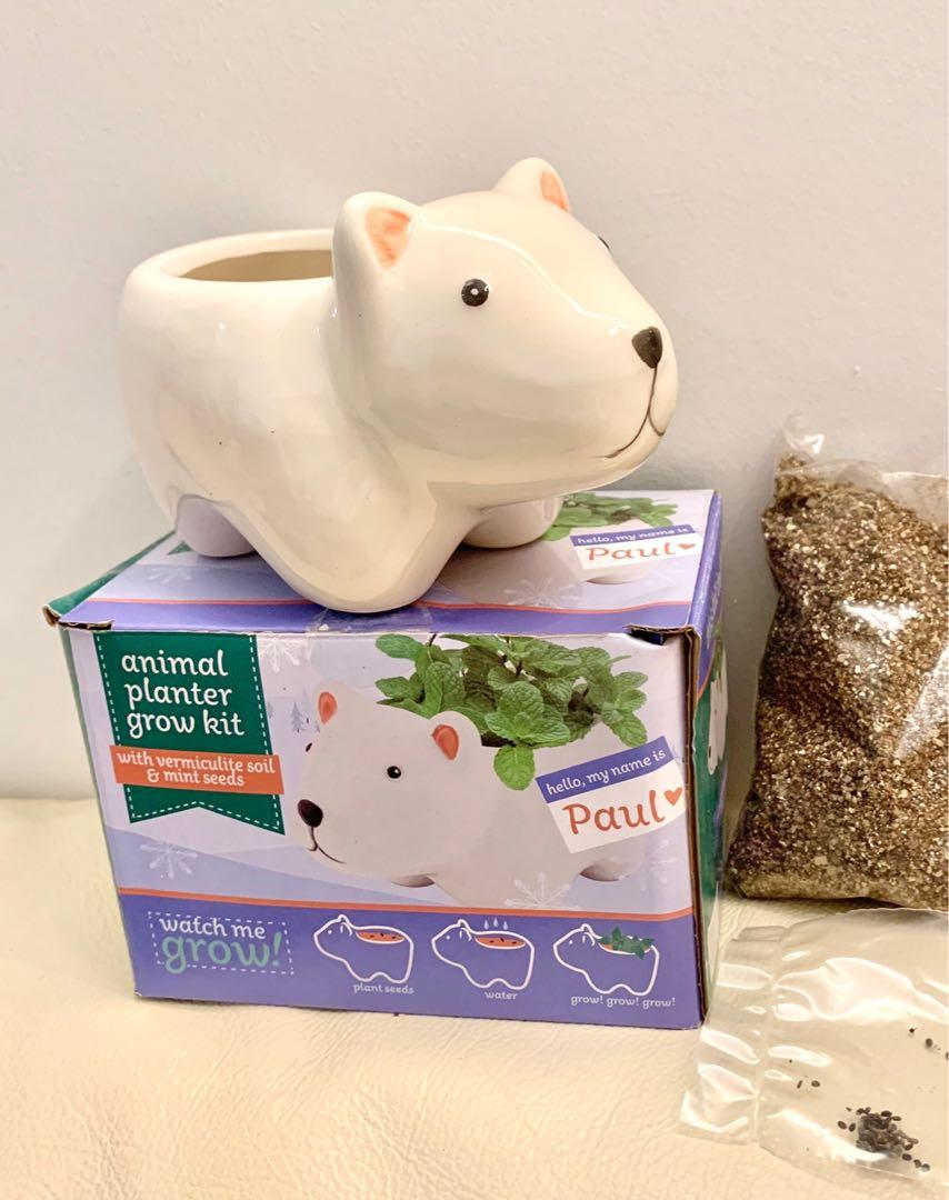 NEW polar bear planter with soil and seeds