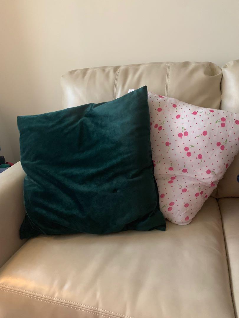 2 Throw Pillows