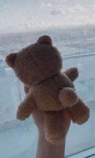 Super cute teddy bear air-pod case