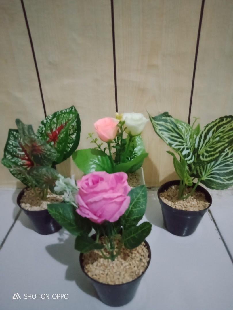 Bunga Plastik mini untuk rak dinding