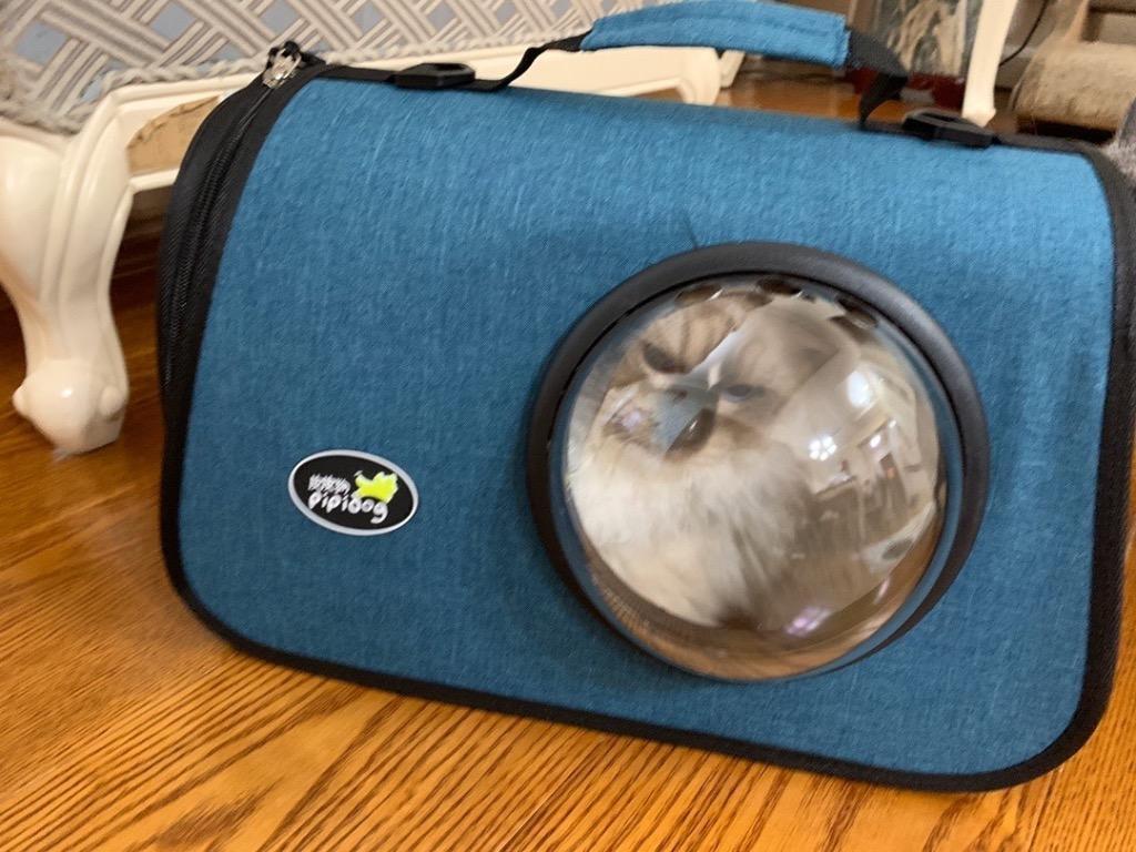 寵物貓外出斜邊單肩包