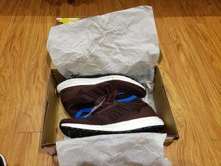 Men's UltraBoost All Terrain Adidas shoes