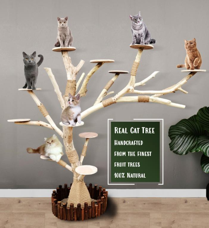 All Natural Solid Real Cat Tree Cat Condo Cat Furniture Cat Playground Pet Supplies For Cats Cat Accessories On Carousell