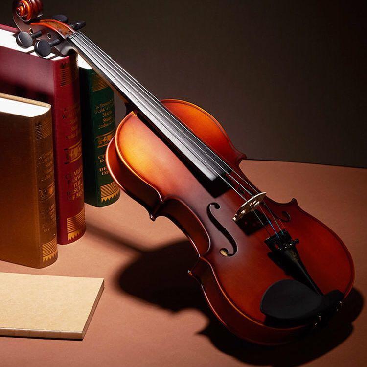 小提琴兒童成人初學者學生練習演奏實木全手工專業級提琴