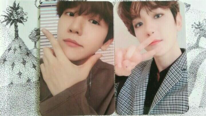 Photocard Official Baekhyun