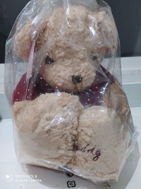 Teddy Bear VERY CUTE!