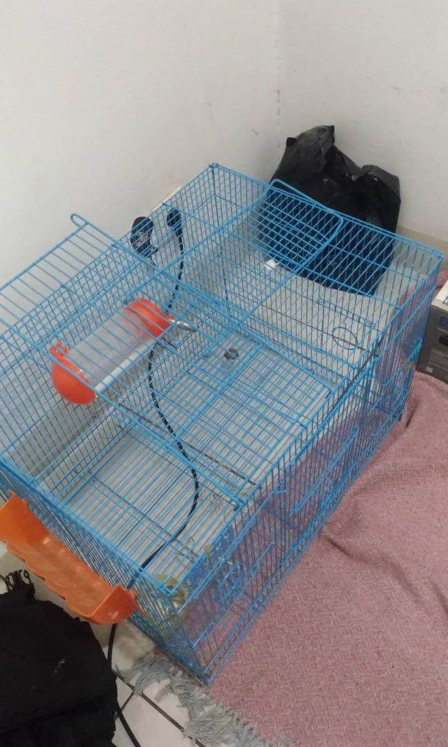 kandang kelinci / binatang lainnya