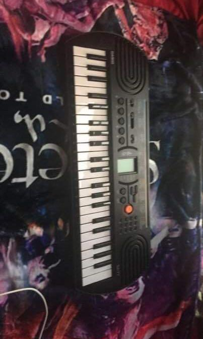 Casio SA76 44 mini Sized Keys 100 Tones don't use it it's brand new. Great for children or beginners
