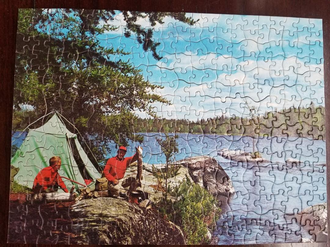 350 odd shaped pieces - puzzle