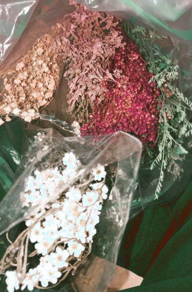 美美ㄉ各式乾燥花