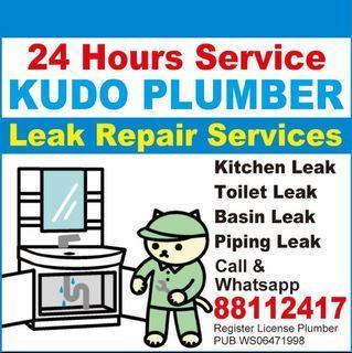 Repair Water Leak - Plumber 88112417