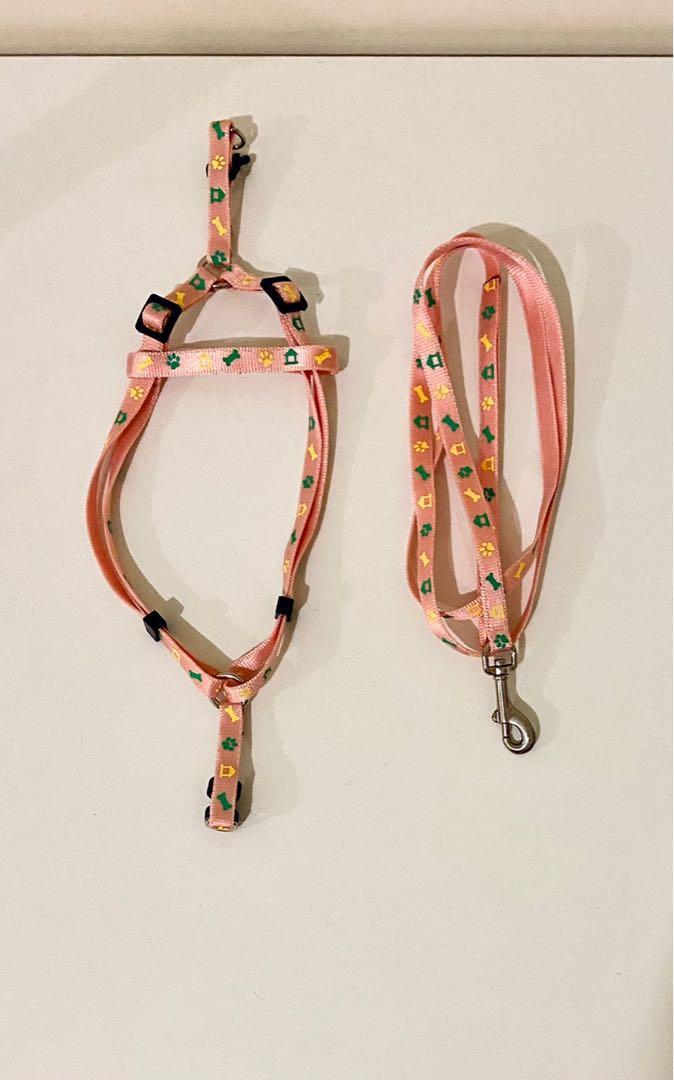 兔子 牽繩 小動物牽繩 背袋