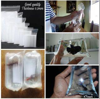 Betta fish transparent packing
