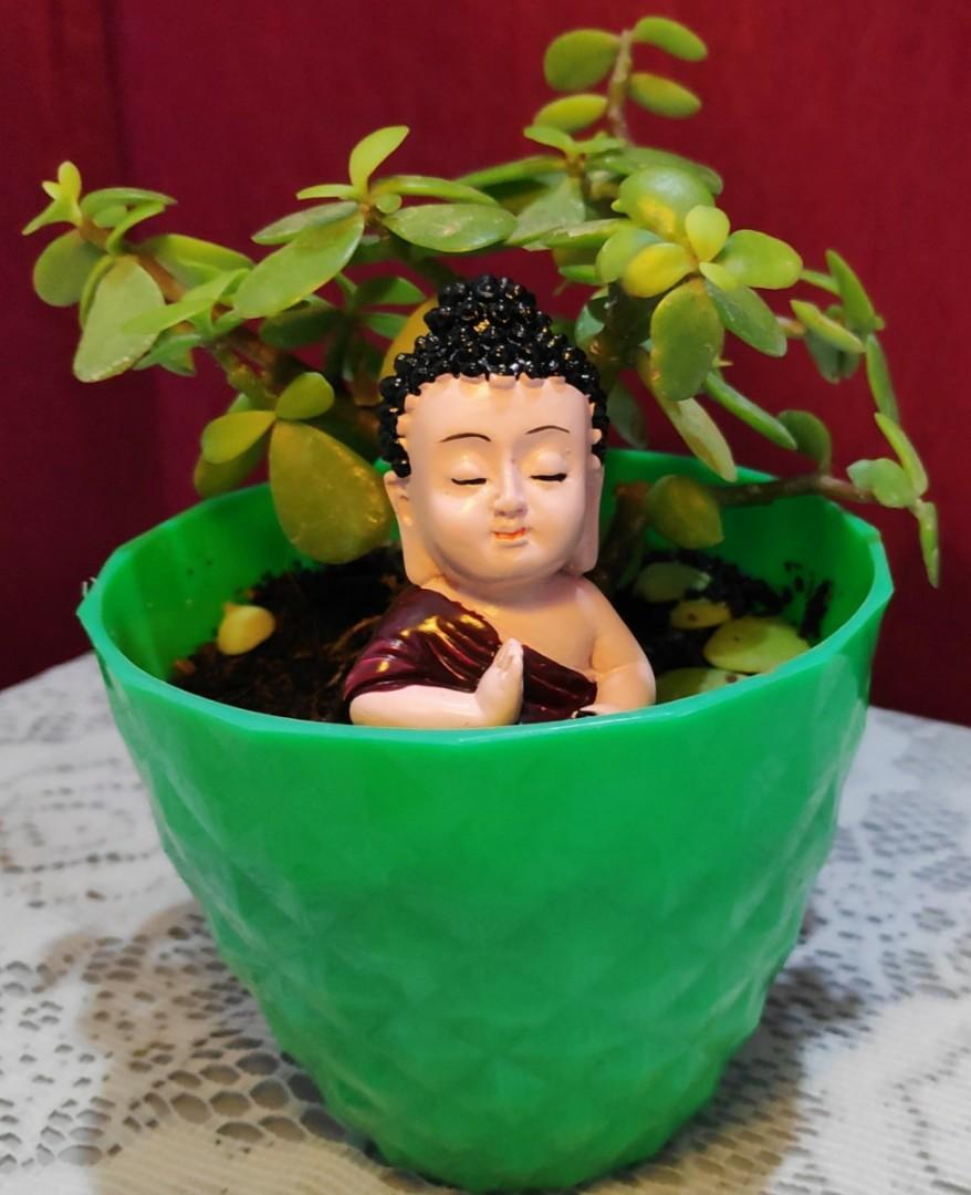 Cute Buddha idol