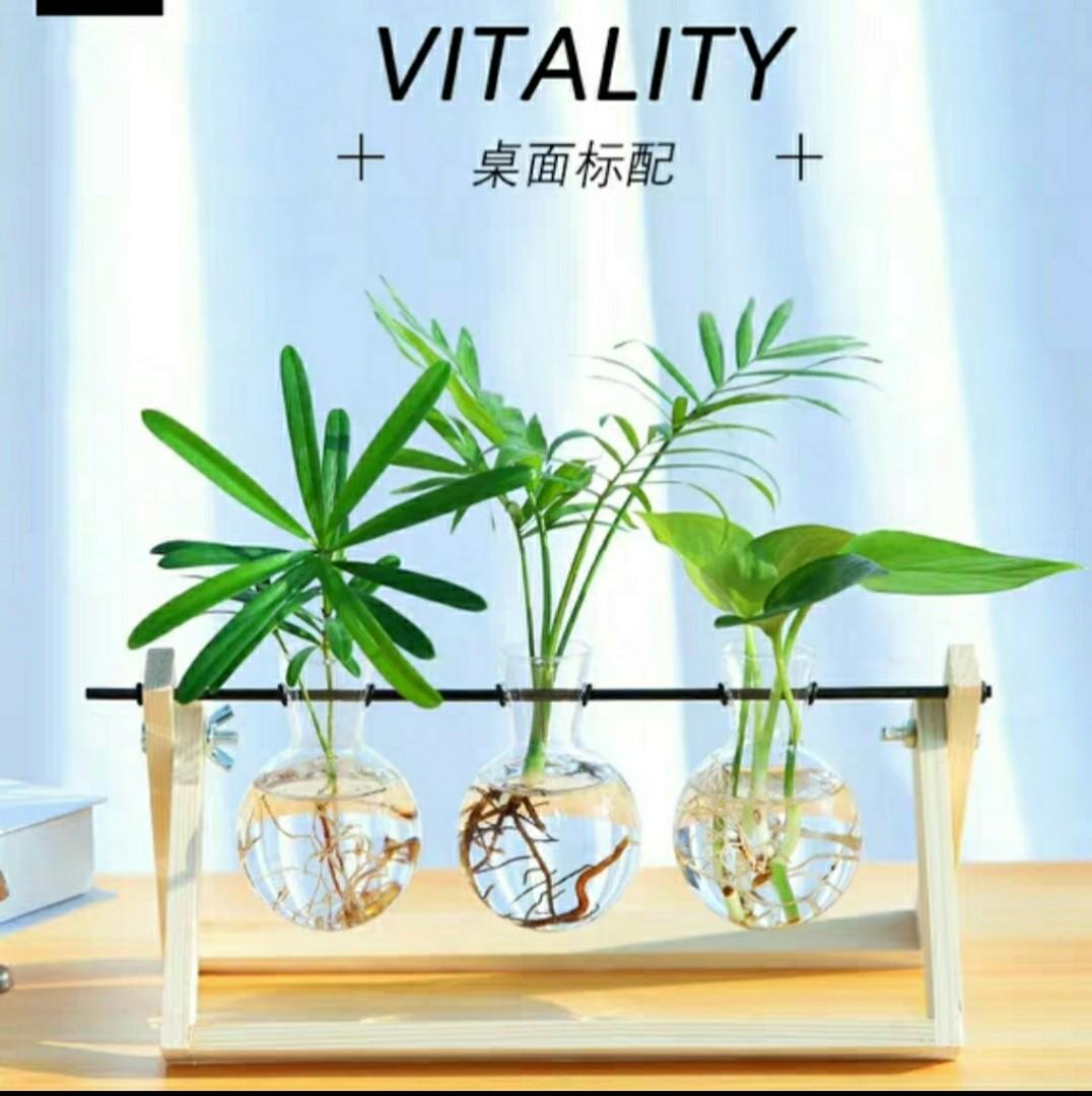 Brand New Hydroponic Glass And Wood Vase Planter Terrarium Table Desktop Plant Bonsai Flower Hanging Pots With Wooden Tray Home Decor Gardening Pots Planters On Carousell