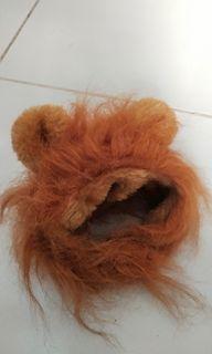 Wig Kucing Lion Hair
