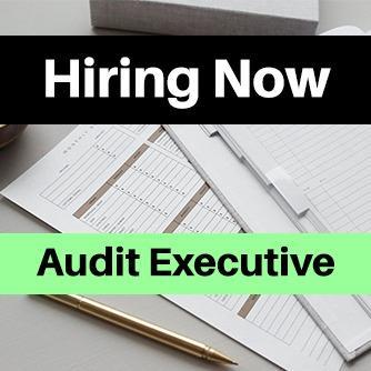 Audit Executive, Jobs, Admin & Finance on Carousell