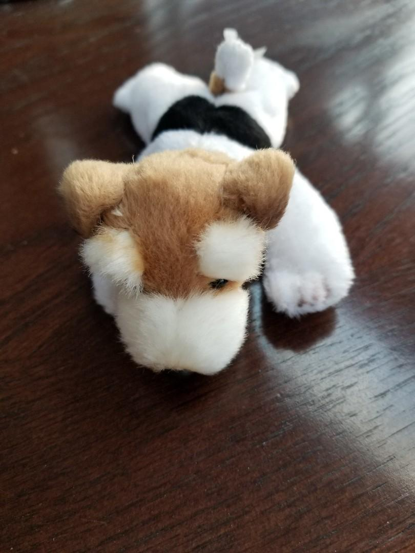 Brand new little Teddy bear
