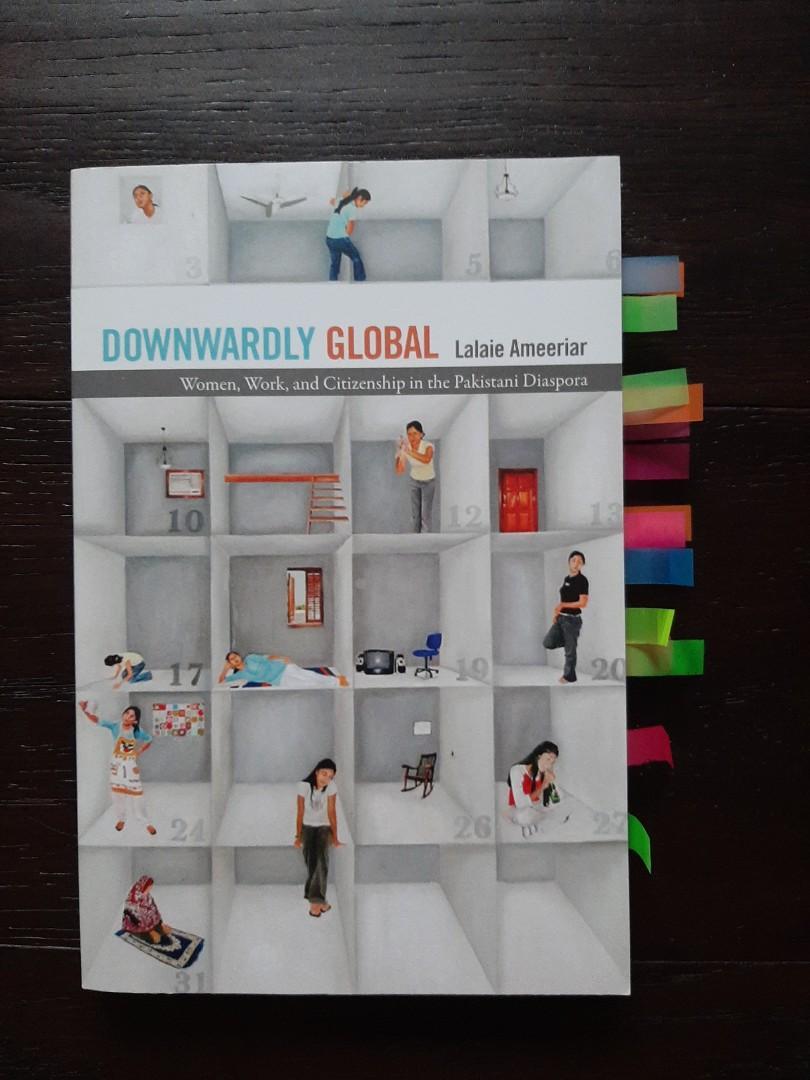 Downwardly Global by Lalaie Ameeriar