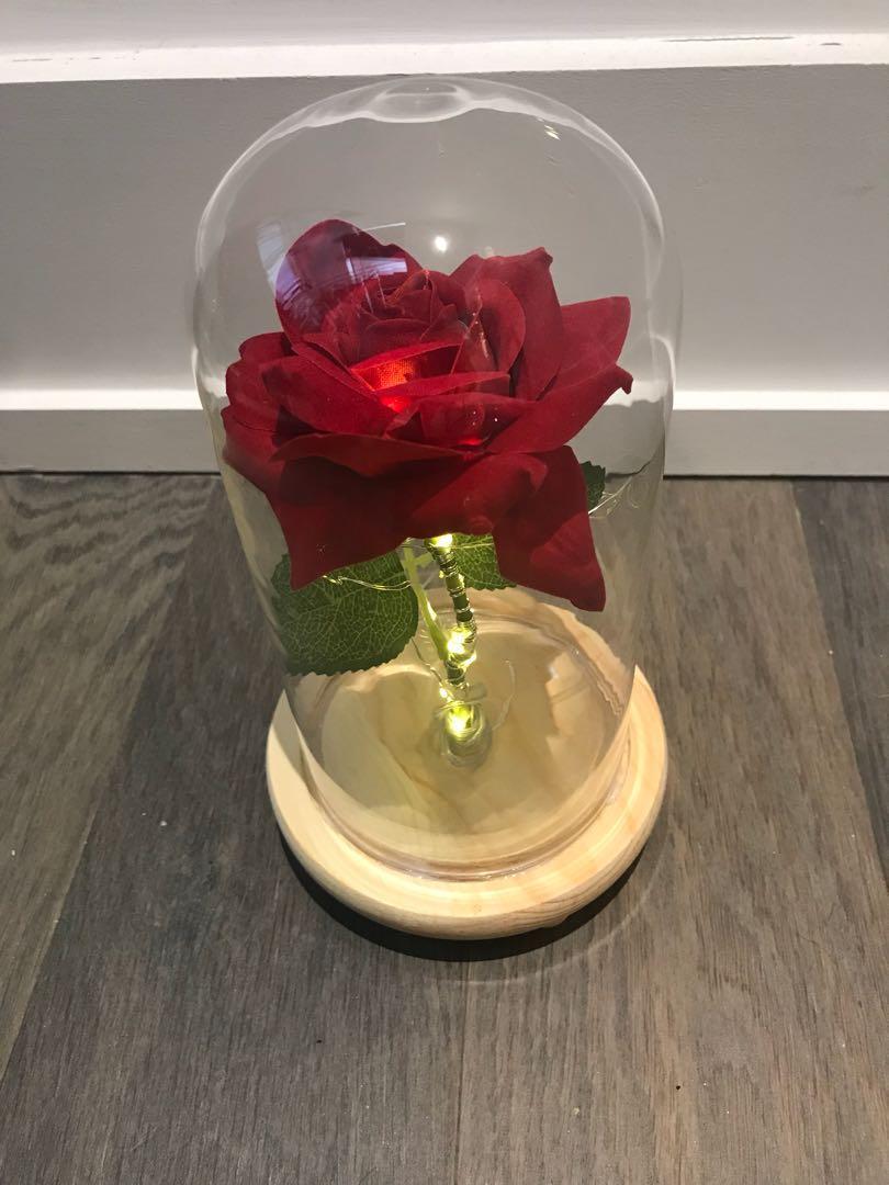 Rose light up Decor