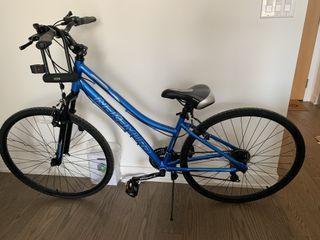 Nakamula Hybrid bike women medium , blue, 700C