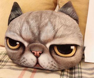 (送口罩)全新厭世貓咪抱枕