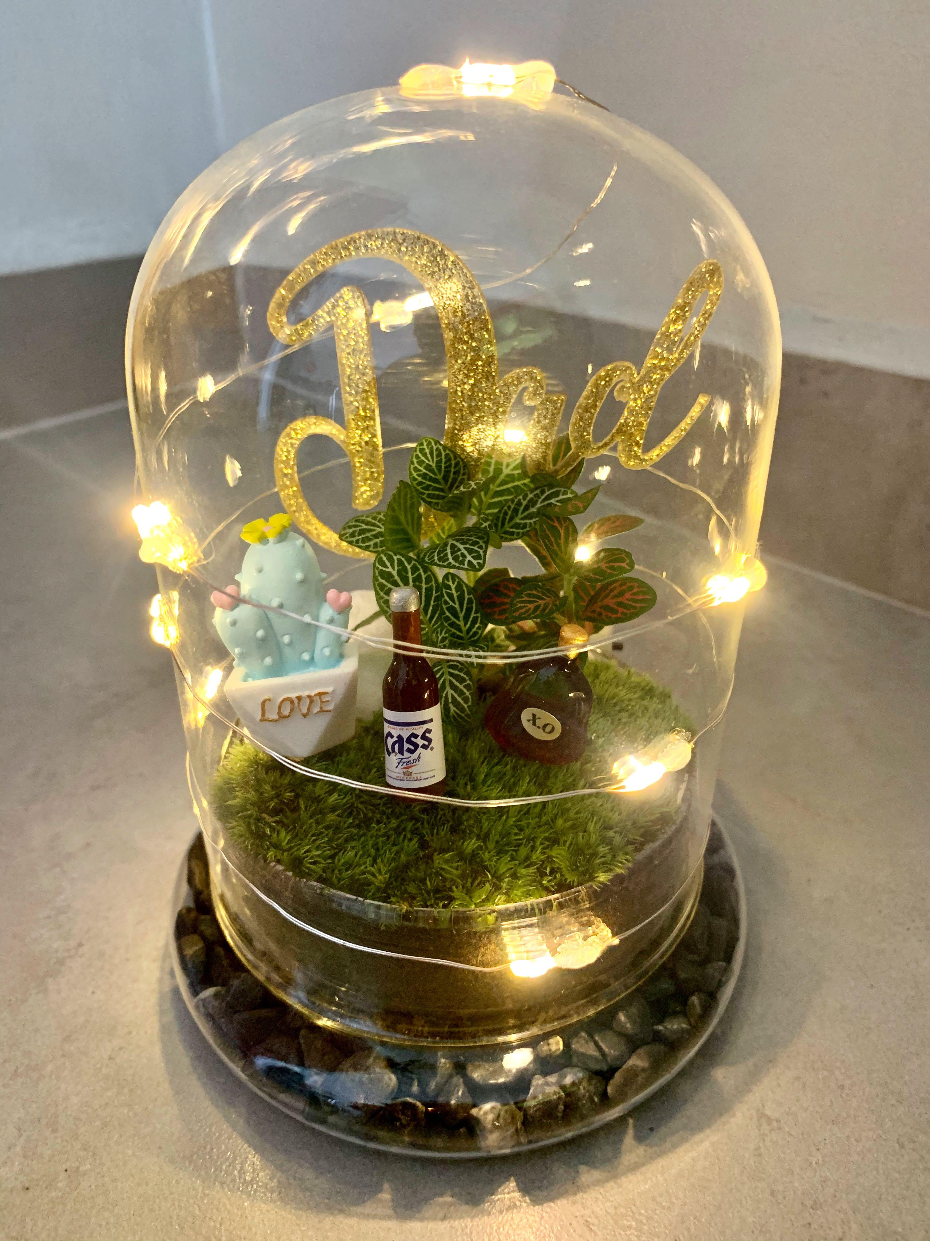 Live Moss Terrarium With Fairytale Lights Father S Day Gardening Plants On Carousell