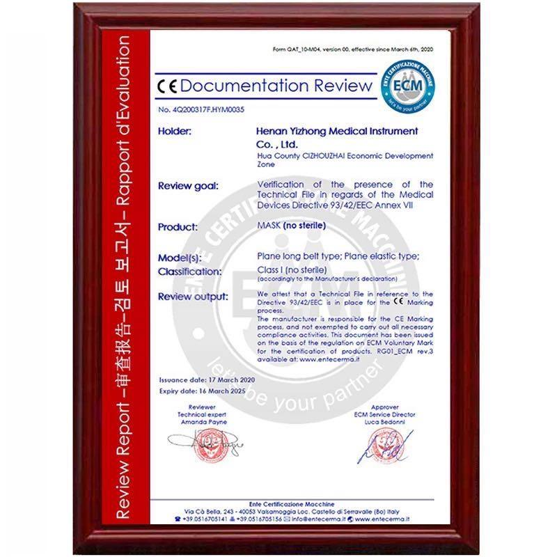 20PCS Face Masque with CE and FDA Certificate,in Stock