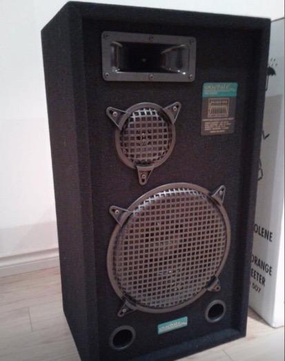 Professional Speaker Set