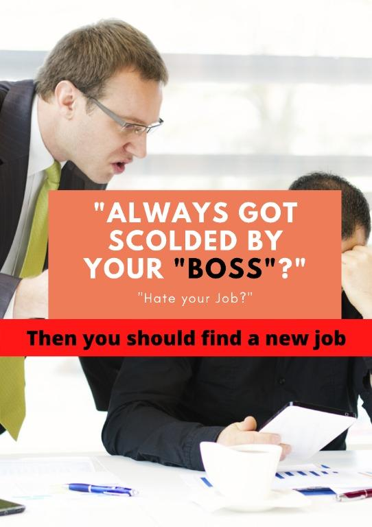 """""""100 reason why you should not work for a boss"""" Read Description"""