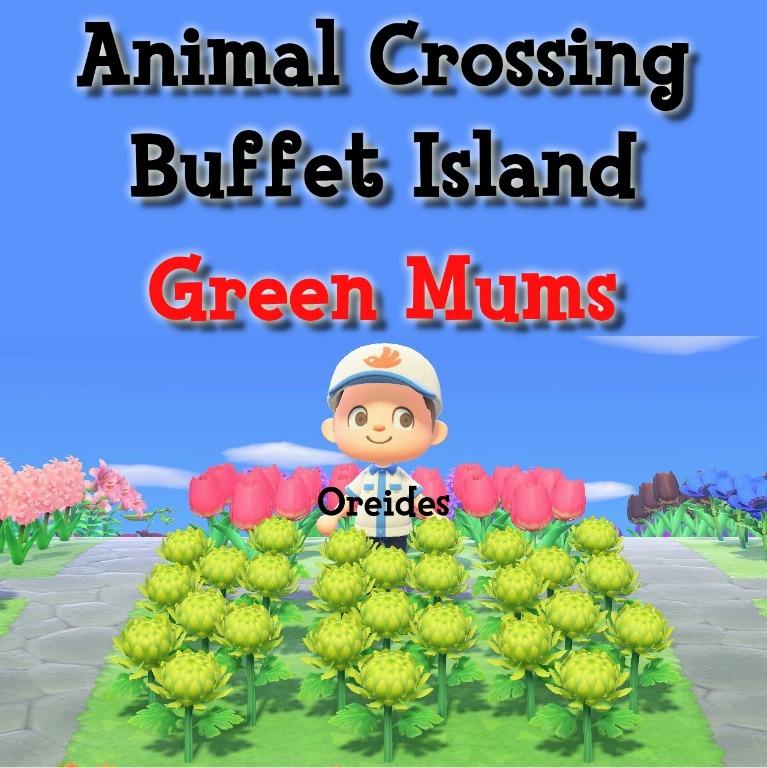 Animal Crossing, Green Mum Flowers, Toys & Games, Video ...