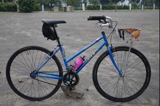 Sepeda trek mtb hybrid single speed fixie keranjang