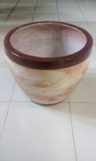 Pot bunga anggrek warna cream